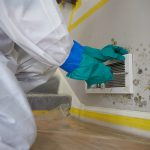 Mold Remediation in Humble, TX