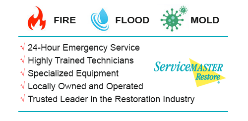 servicemaster fire flood mold experts texas