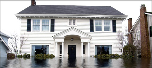 Water Damage Restoration In Kingwood TX