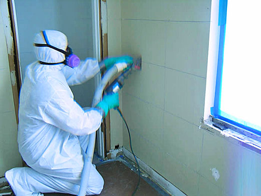 Commercial Mold Remediation