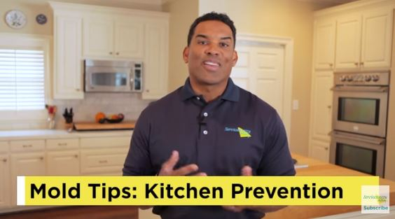 Mold Prevention - Kitchen Tips