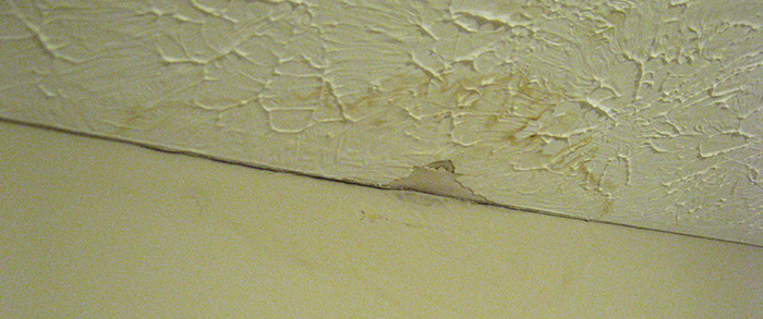 Ceiling Water Damage – Common Causes And Repair