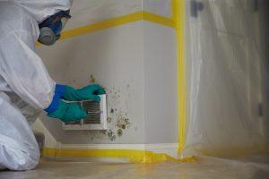 ServiceMaster-Mold-Remediation-Southwest-Houston-TX